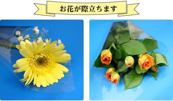 お花が際立ちます。